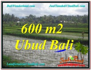 Magnificent PROPERTY 600 m2 LAND IN Ubud Tegalalang FOR SALE TJUB607