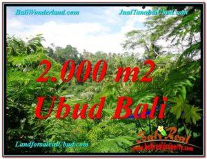 Ubud Tegalalang BALI LAND FOR SALE TJUB611