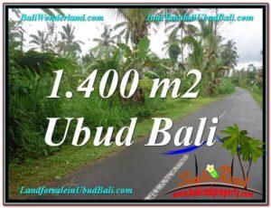 FOR SALE LAND IN Ubud Tegalalang TJUB612