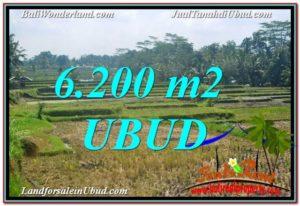 Exotic UBUD BALI 6,200 m2 LAND FOR SALE TJUB631