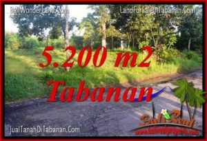 FOR SALE Affordable PROPERTY LAND IN Tabanan Selemadeg TJTB334