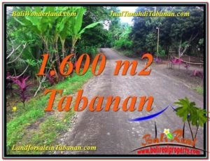 Affordable LAND SALE IN TABANAN BALI TJTB337