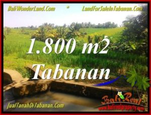 Exotic PROPERTY Tabanan Selemadeg 1,800 m2 LAND FOR SALE TJTB338