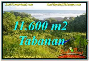 Magnificent LAND SALE IN TABANAN TJTB340