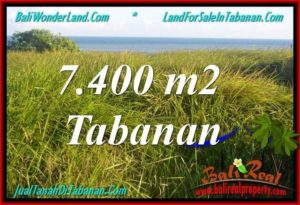 Affordable 7,400 m2 LAND FOR SALE IN TABANAN BALI TJTB341