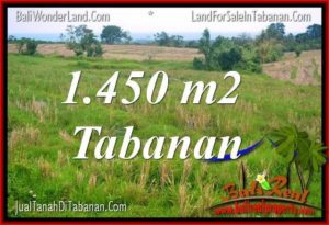 Magnificent PROPERTY 1,450 m2 LAND SALE IN Tabanan Selemadeg TJTB343