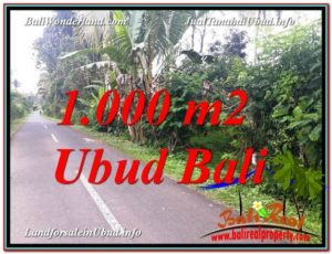 Magnificent 1,000 m2 LAND FOR SALE IN UBUD BALI TJUB614