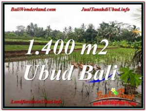 FOR SALE Exotic LAND IN Ubud Payangan BALI TJUB615