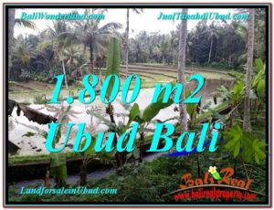 Beautiful 1,800 m2 LAND IN UBUD BALI FOR SALE TJUB616