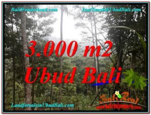 Beautiful LAND FOR SALE IN UBUD TJUB617