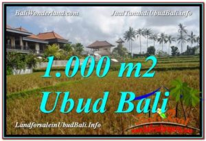 Affordable LAND FOR SALE IN Ubud Pejeng BALI TJUB618