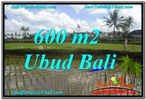 Exotic PROPERTY UBUD LAND FOR SALE TJUB621