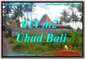 FOR SALE Magnificent PROPERTY 614 m2 LAND IN UBUD BALI TJUB622