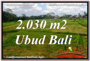 Magnificent PROPERTY LAND SALE IN UBUD TJUB623