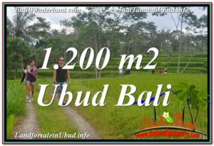Magnificent PROPERTY LAND FOR SALE IN UBUD TJUB624