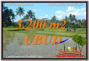 Affordable LAND IN Ubud Payangan BALI FOR SALE TJUB628