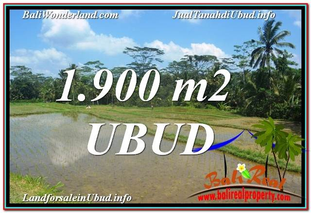 Affordable 1,900 m2 LAND IN UBUD BALI FOR SALE TJUB629