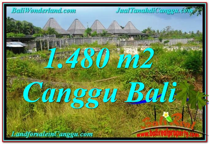 Canggu Pererenan LAND FOR SALE TJCG212