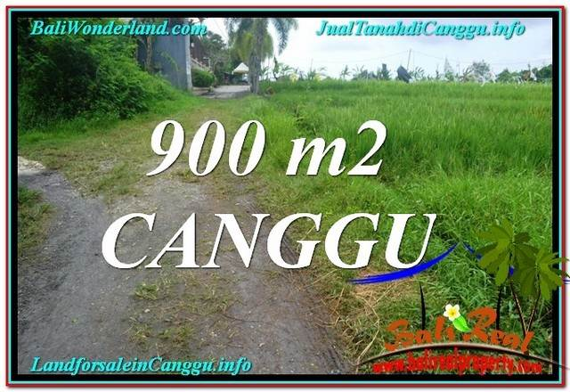 Exotic PROPERTY 900 m2 LAND IN CANGGU BALI FOR SALE TJCG215