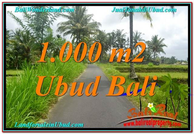 Magnificent 1,000 m2 LAND FOR SALE IN UBUD BALI TJUB634