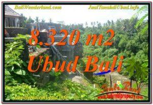 FOR SALE Beautiful 8,320 m2 LAND IN UBUD BALI TJUB635