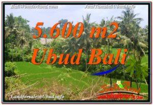 Affordable PROPERTY UBUD BALI 5,600 m2 LAND FOR SALE TJUB636