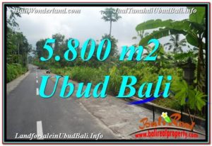 Affordable PROPERTY 5,800 m2 LAND FOR SALE IN Ubud Tegalalang TJUB637
