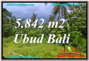 Affordable PROPERTY UBUD BALI 5,842 m2 LAND FOR SALE TJUB638