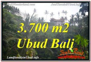 Exotic PROPERTY 3,700 m2 LAND SALE IN UBUD BALI TJUB640