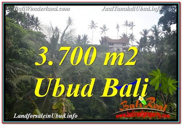 Beautiful PROPERTY UBUD 3,700 m2 LAND FOR SALE TJUB640