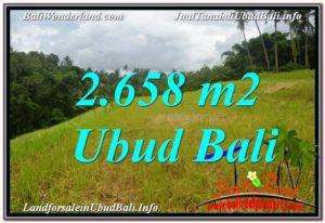 Magnificent PROPERTY Sentral / Ubud Center 2,658 m2 LAND FOR SALE TJUB641