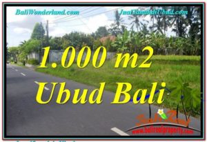 Magnificent LAND FOR SALE IN UBUD TJUB649