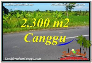 Magnificent 2,300 m2 LAND IN CANGGU BALI FOR SALE TJCG209