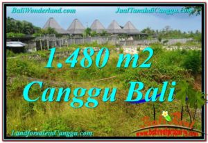 Exotic CANGGU 1,480 m2 LAND FOR SALE TJCG212
