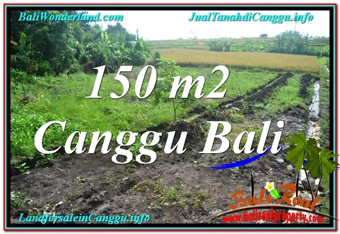 Exotic PROPERTY 150 m2 LAND FOR SALE IN Canggu Pererenan BALI TJCG213