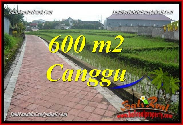 LAND FOR SALE IN Canggu Brawa TJCG220