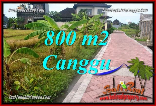Affordable LAND IN Canggu Brawa FOR SALE TJCG221