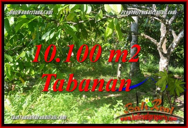 Exotic PROPERTY LAND IN TABANAN BALI FOR SALE TJTB360
