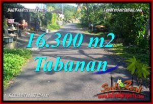 FOR SALE Affordable PROPERTY 16,300 m2 LAND IN TABANAN BALI TJTB361