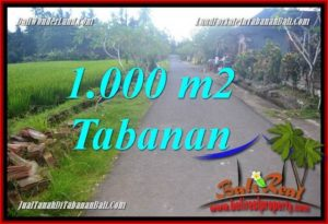 Magnificent LAND IN TABANAN FOR SALE TJTB363
