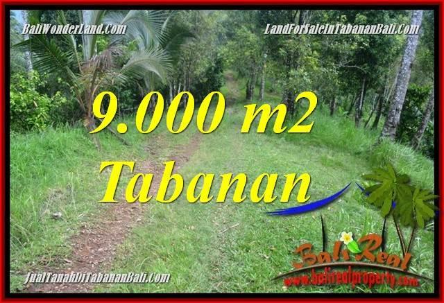 Beautiful 9,000 m2 LAND IN TABANAN FOR SALE TJTB364