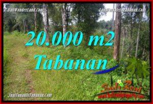 Beautiful PROPERTY LAND SALE IN TABANAN BALI TJTB365