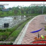 Affordable 600 m2 LAND FOR SALE IN CANGGU TJCG220