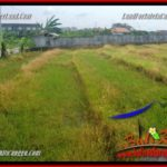 Exotic 800 m2 LAND IN CANGGU FOR SALE TJCG221