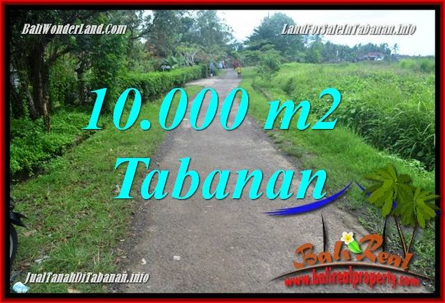 FOR SALE Affordable 10,000 m2 LAND IN Tabanan Selemadeg BALI TJTB354