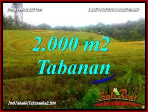 Beautiful 2,000 m2 LAND SALE IN TABANAN BALI TJTB356