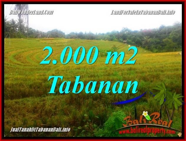 Beautiful 2,000 m2 LAND SALE IN TABANAN BALI TJTB356