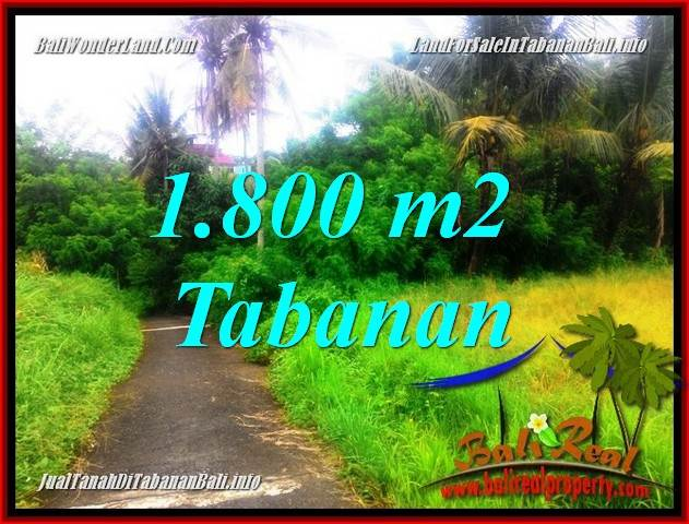 Affordable PROPERTY Tabanan Selemadeg LAND FOR SALE TJTB357