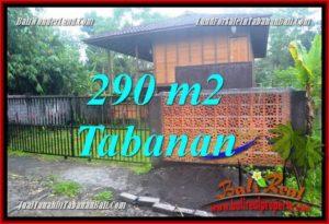 FOR SALE LAND IN Tabanan Penebel BALI TJTB358