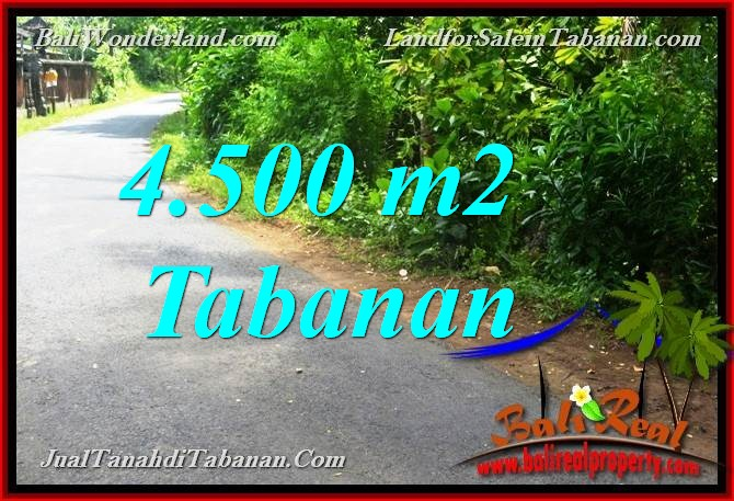 Beautiful 4,500 m2 LAND SALE IN Tabanan Selemadeg TJTB380